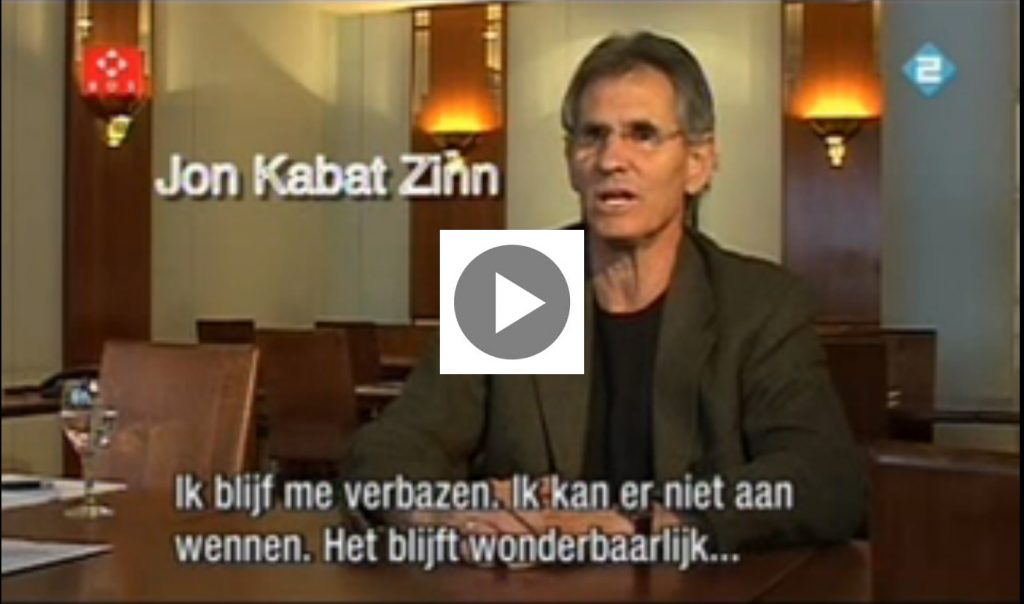 Jon Kabat Zinn video stress burn-out